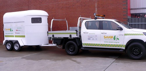 SAVEM Hilux and Horse Float