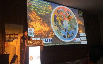 The 6th International Fire Behaviour and Fuels Conference