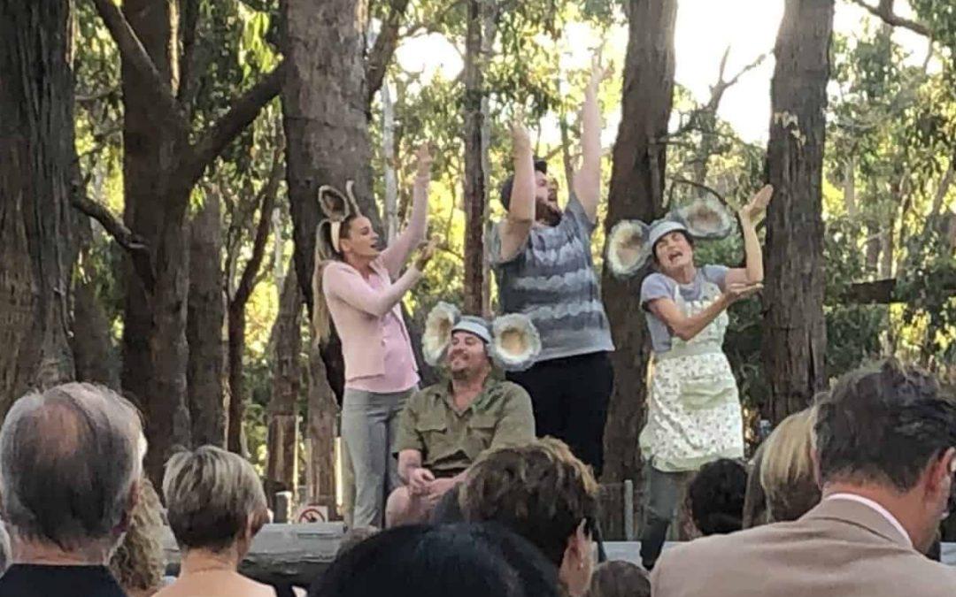 Koala Life launch at Cleland Wildlife Park